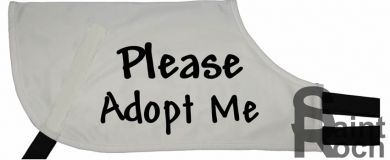 Please Adopt Me - Greyhound Coat